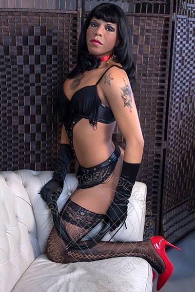 Rebecca Mulatta Brasiliana  REGGIO EMILIA 3272610945